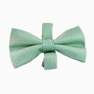 Mint Tone on Tone Banded Bow Tie 1096-0